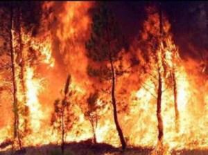 incendio spagna